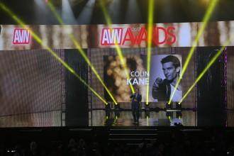 AVN 2017 Awards Show